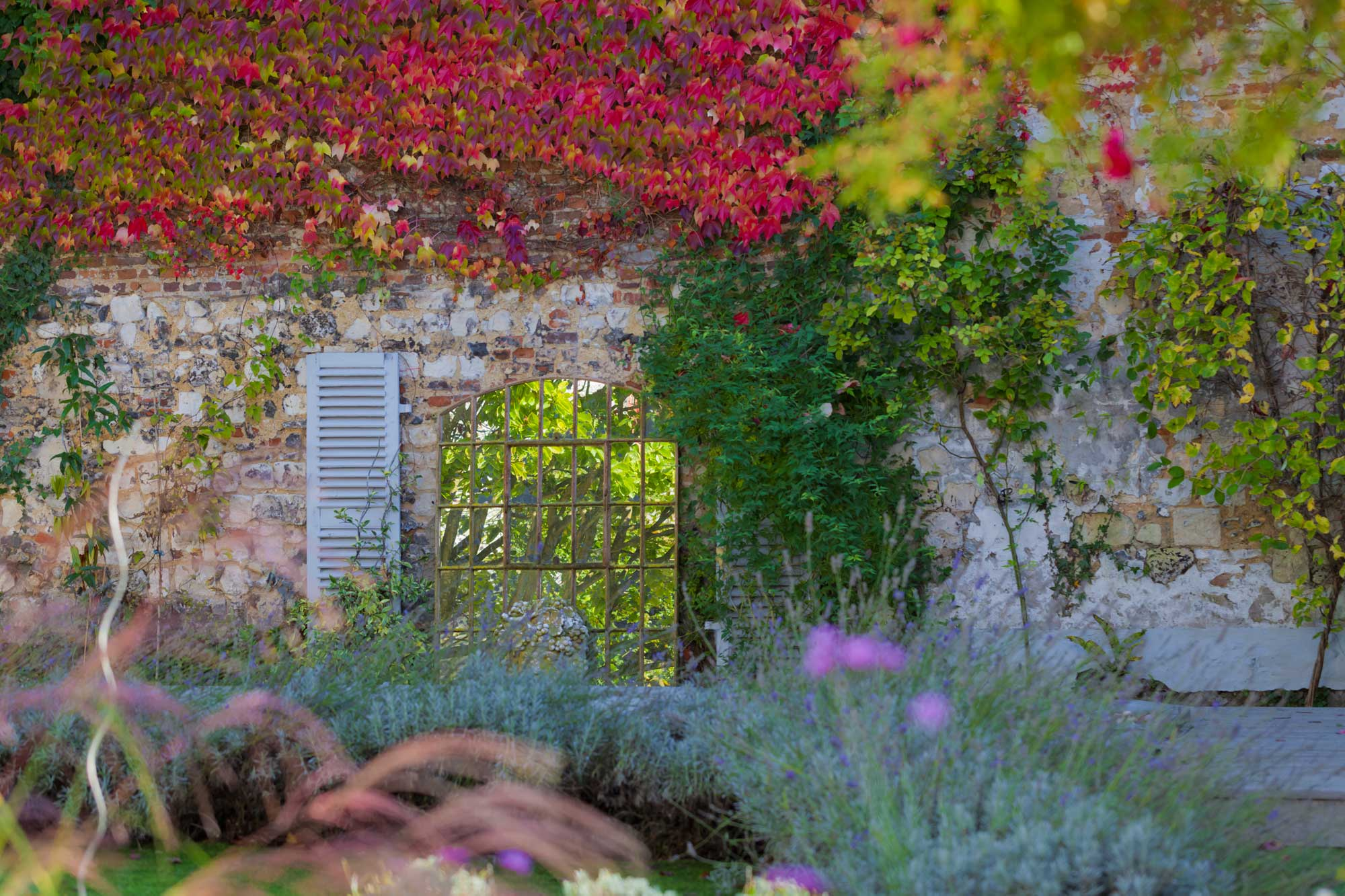 Autumn colours in the garden at Maison76